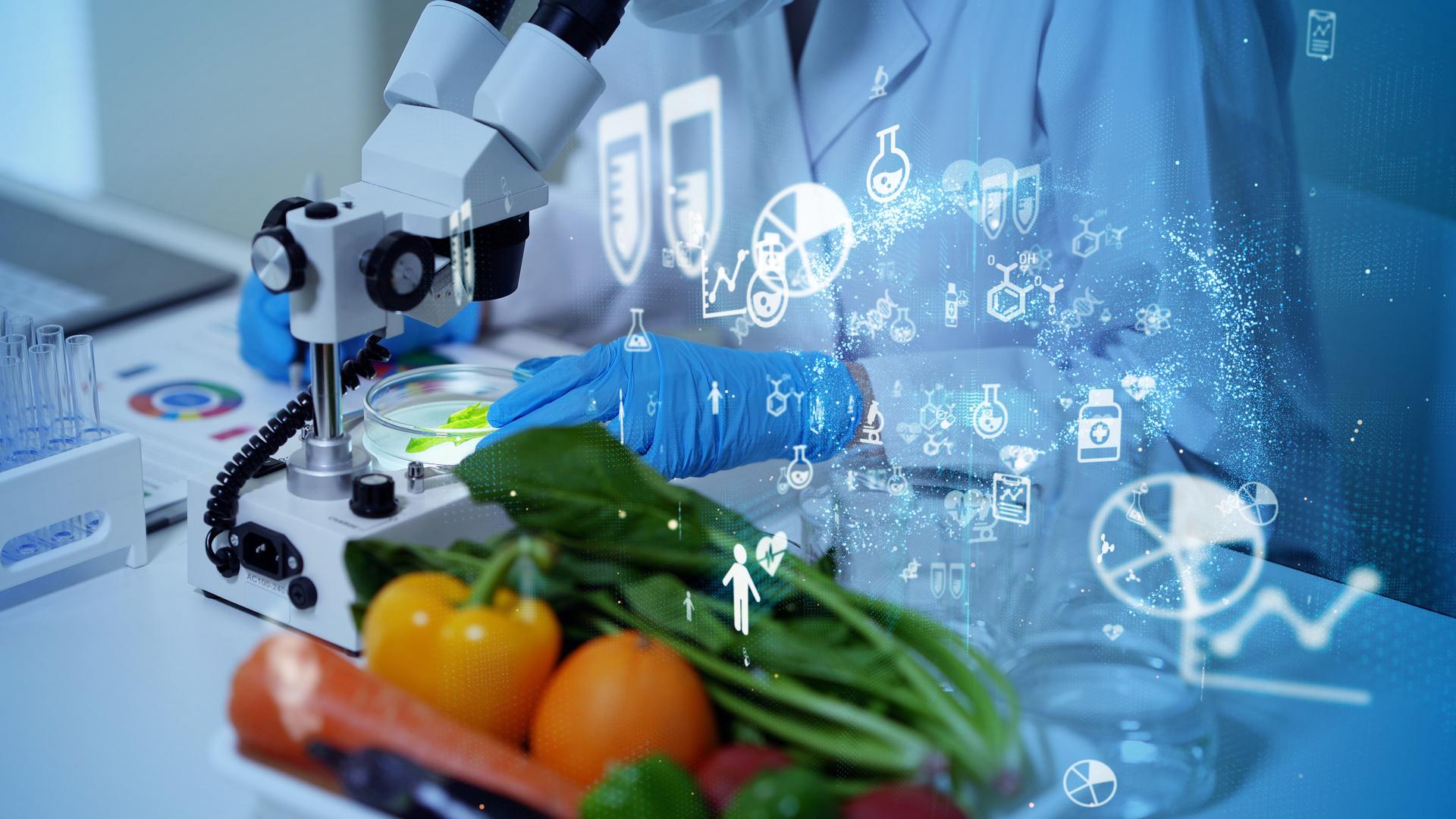 Máster Universitario en Nutrición Humana